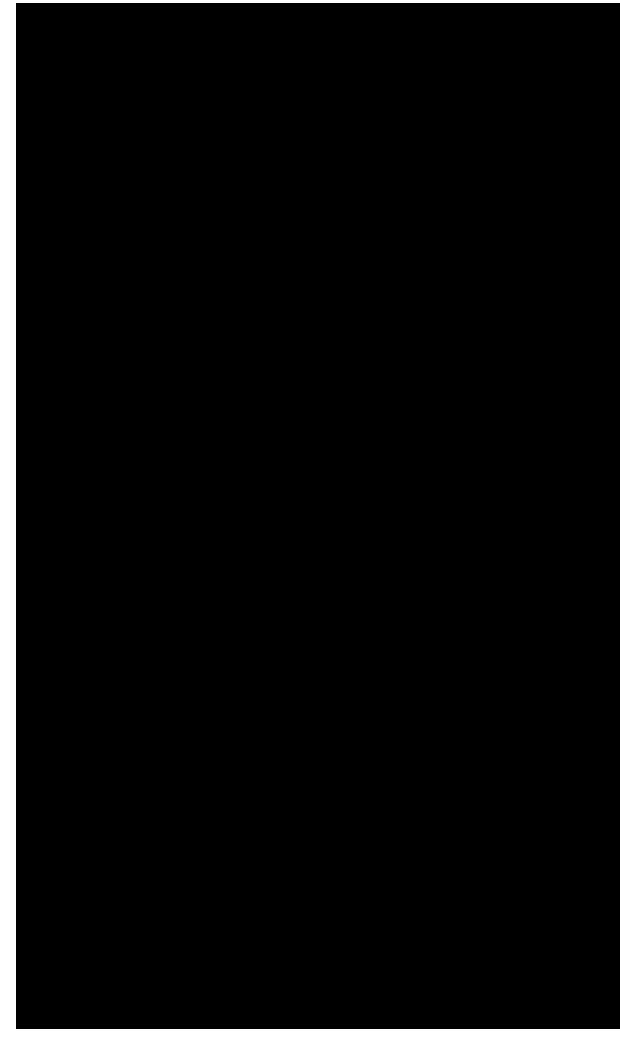 H29柏崎マラソンT&F結果